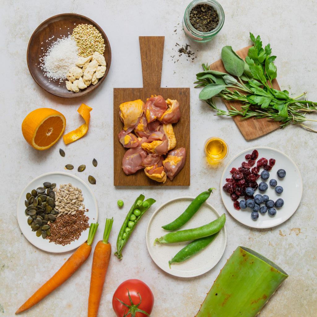 Stanbio organic 100% natural dry food