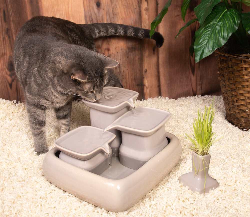 Miaustore Cat Water Fountain - Gray
