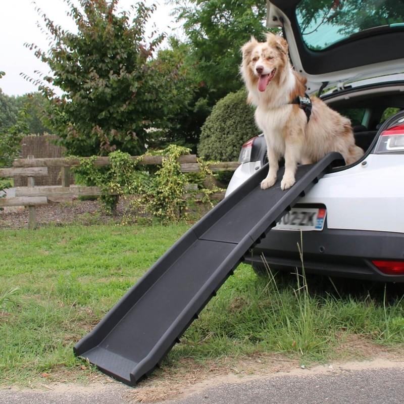 Access ramp for dog Orthopedic DOGGY PASS Zolia